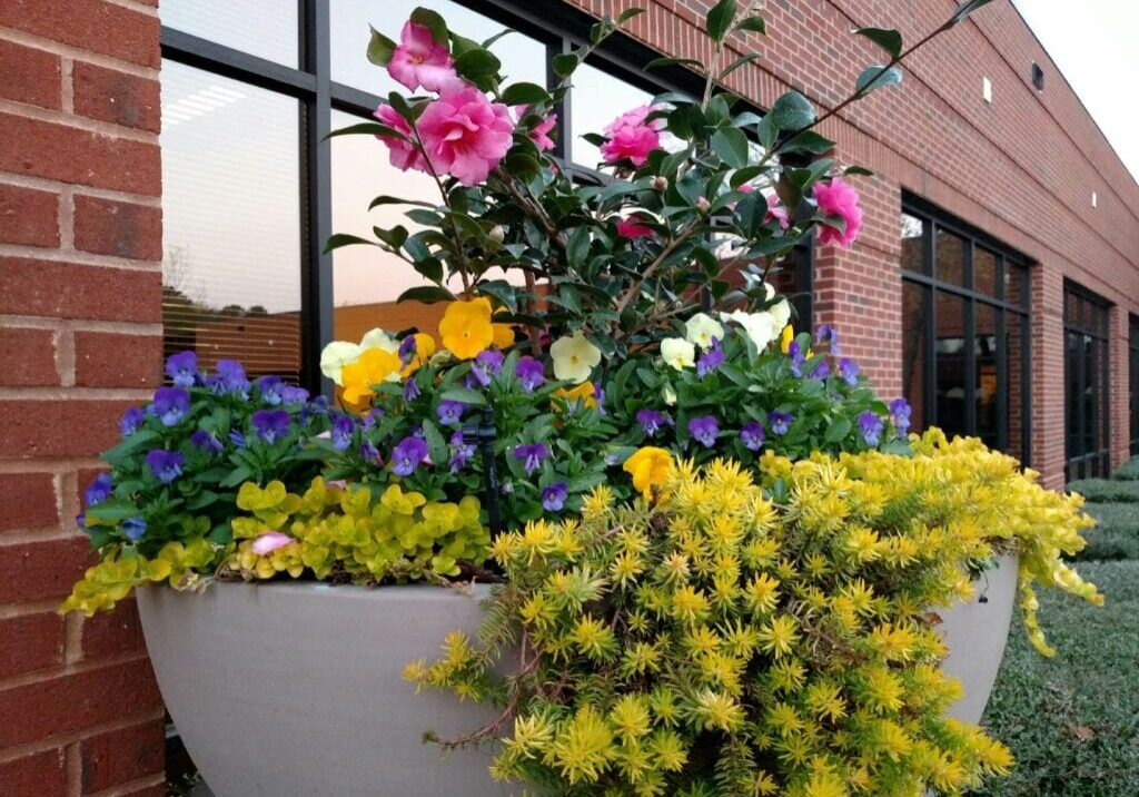 exterior planter